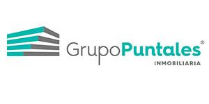 Grupo Puntales Inmobiliaria